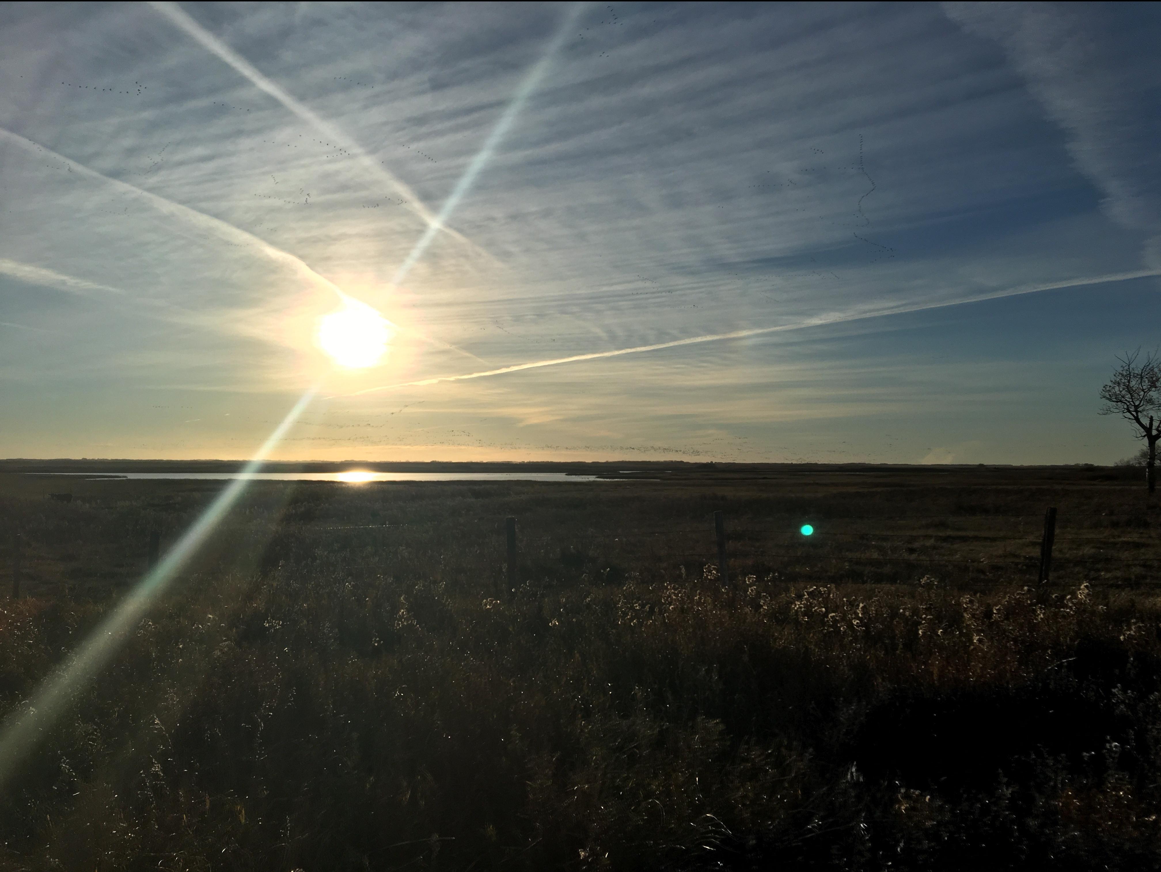Morning over prairie2