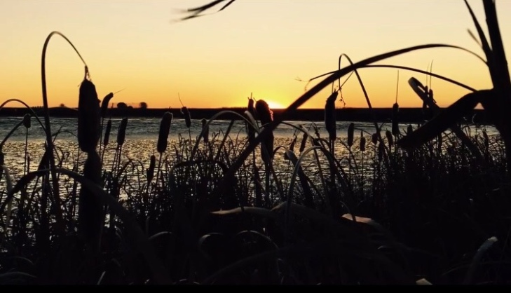 Sunrise over breeze lake